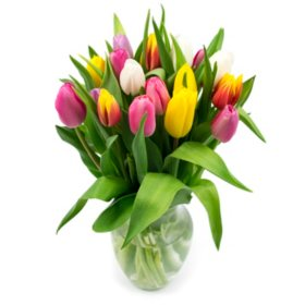 Tulip Bouquet, Rainbow Colors