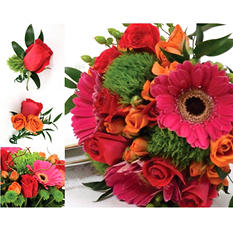 Wedding Collection - Hot Pink, Green and Orange (17 pc.)