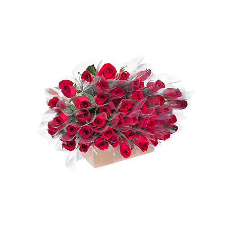 Individually Sleeved Roses, Red (choose 80 or 150 stems)