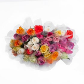 Individually Sleeved Roses, Assorted Colors (choose 80 or 150 stems)