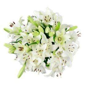 LA Lilies, White (50 stems)