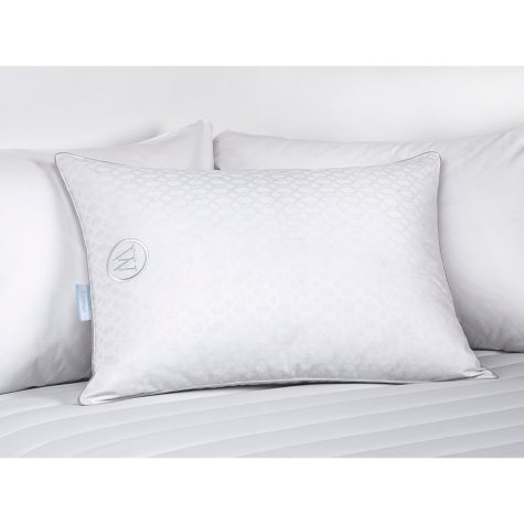 Waverly 300-Thread-Count Cotton 75/25 Down/Feather Pillow (Various Sizes)