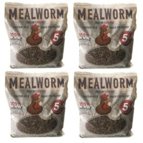 Flock Fest Dried Mealworms for Chickens, Wild Birds, Ducks and Small Pets (5 lb. bags, 4 ct.)