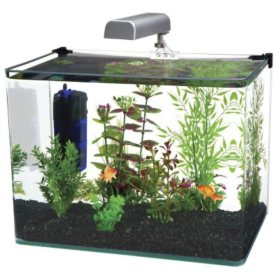 Penn Plax Water World Radius Aquarium Kit, 7.5-Gallon