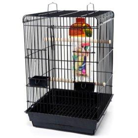 Penn Plax Parrot Starter Kit