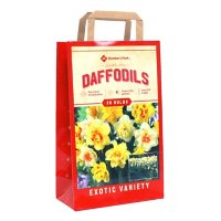 Daffodil Double Mix - Package of 36 Dormant Bulbs