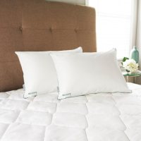 Iso-Cool Standard Pillows with Outlast Covers (2-pack)