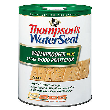Thompson's WaterSeal Waterproofer Plus Wood Protector, 5-Gallon (Clear)