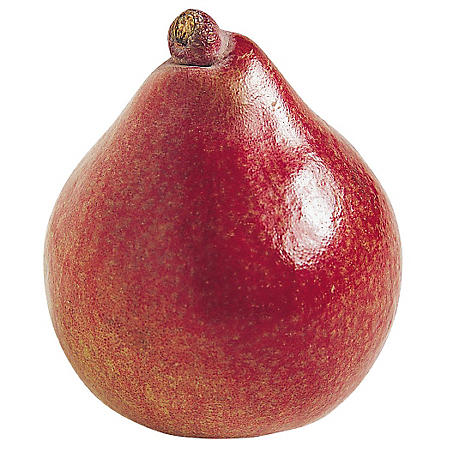Red D'Anjou Pears (5 lb.)