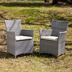 Harlow Outdoor Easy Chairs 2-Piece Set