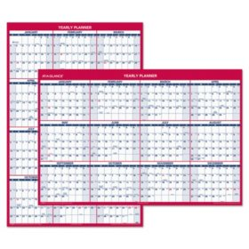 AT-A-GLANCE Erasable Vertical/Horizontal Wall Planner, 32 x 48, Blue/Red, 2020
