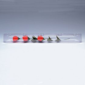 Single Rose Box, Crystal (100 ct.)