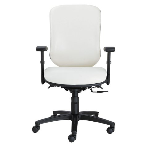 Alera Eon Series Multifunction Mid-Back Stain Resistant Task Chair, White