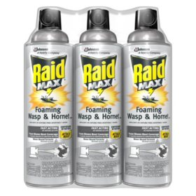 Raid Max Foaming Wasp & Hornet Killer 3 x 13 oz.