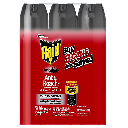 Raid Ant & Roach Killer 26, Outdoor Fresh Scent, 3 ct, 17.5 oz