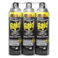 Raid Wasp & Hornet Killer 3ct,  17.5 oz