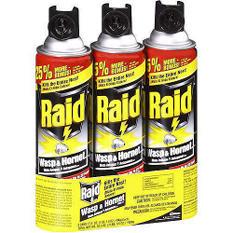 Raid ® Wasp & Hornet Killer - 3 pk./17.5 oz.
