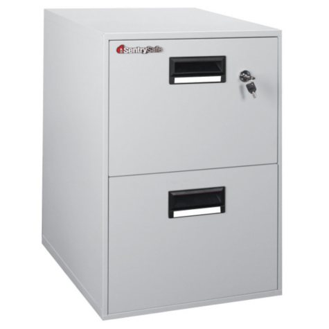 SentrySafe Two-Drawer Fire Safe File Cabinet, Gray