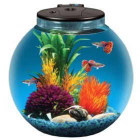 "KollerCraft 3-Gallon Aquarium Kit with 7 Color LED Lights, Power Filter, 4"" Net and Seashell Décor"