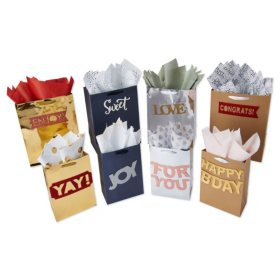 "American Greetings ""Design Your Own"" Gift Bag, Tissue Paper and Adhesive Banner Kit"