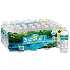 Zephyrhills 100% Natural Spring Water (16.9 oz. bottles, 40 pk.)