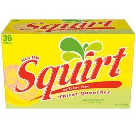 Squirt Citrus Soda (12oz / 36pk)