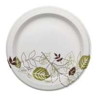 """Dixie Ultra 10.12"""" Heavy-Weight Paper Plates, Pathways - SXP10PATH (500 ct.)"""