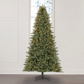 Member's Mark 9' Grand Spruce Christmas Tree