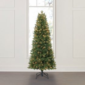 Member's Mark 6' Dawson Pine Christmas Tree