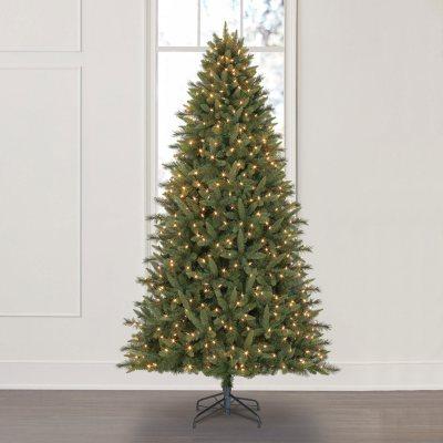 How To Keep Cats Off Christmas Trees.Christmas Trees Sam S Club