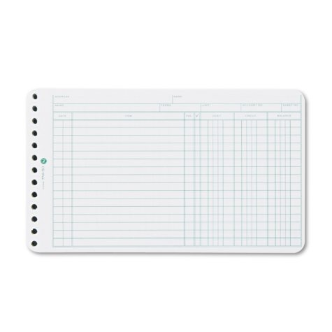 Wilson Jones® Multiple Hole Ledger Sheets