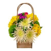 Large Arrangement with Vase (variety and colors may vary)