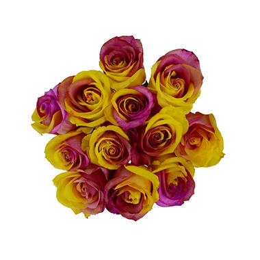 Roses, Tinted Pink and Yellow (50 stems)