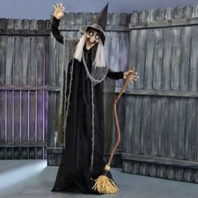 Animated Standing Witch