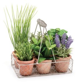 6-Pot Herb Caddy - Set of 4