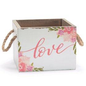"""4"""" Love Planter Box (6 ct.)"""