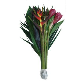 Rainforest Bouquet (10 Bunches)