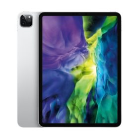 "Apple iPad Pro 11"" 2nd Generation 256GB with Wi-Fi (Choose Color)"