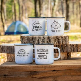 Member's Mark 4-Piece Adventure Mug Set (Assorted Colors)