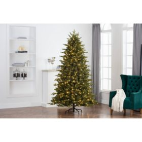 Member S Mark 7 5 Majestic Fir Color Changing Led Christmas