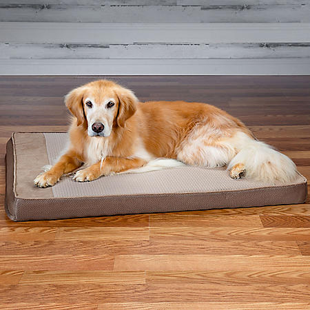 """Member's Mark Cooling Pet Bed, 30"""" x 40"""" (Choose Your Color)"""