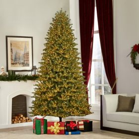 Member's Mark 9' MicroDot Color Changing LED California Fir Tree