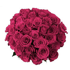 Roses, Hot Pink (75 stems)