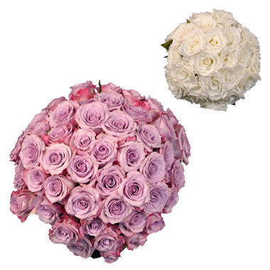 Roses - Wedding Pack Lavendar & White (75 stems)