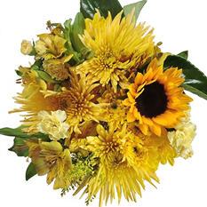 Sunshine Mixed Bouquet - 10 pk.