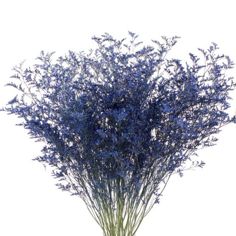 Limonium, Tinted Blue with Glitter (15 bunches)