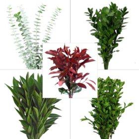 Assorted Greenery #4 (150 Stems)