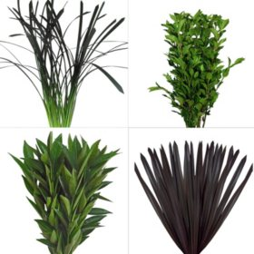 Assorted Greenery #3 (200 Stems)