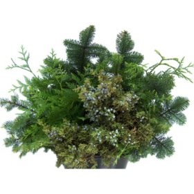 Mixed Evergreen Assortment