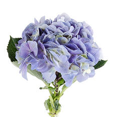 Hydrangeas, Natural  Lavender  (26 Stems)